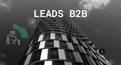 captación leads b2b